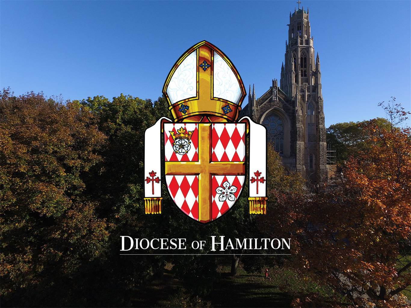 The Diocese of Hamilton wants to hear from you!